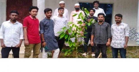 ভারুয়াখালী ব্লাড ডোনার'স সোসাইটির উদ্যোগে বৃক্ষরোপণ